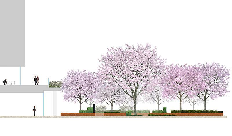 Проектирование японского сада
